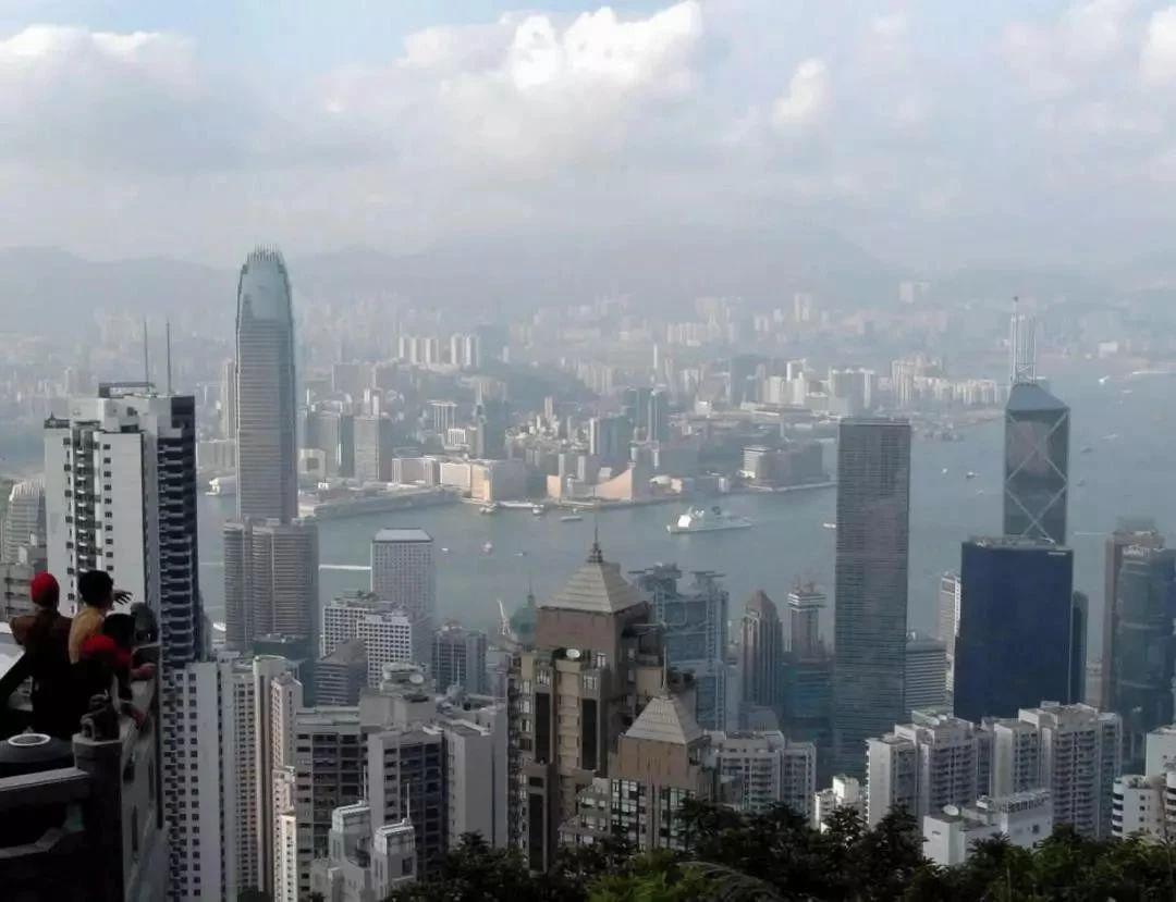香港专才计划成功案例