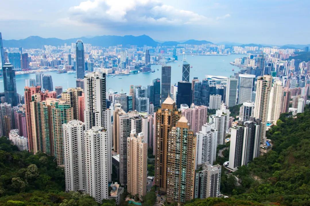 年收入过百万的上海土著家庭,为什么坚持拿香港身份?